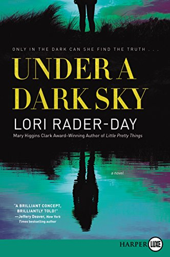 Book Cover: Under a Dark Sky: A Novel