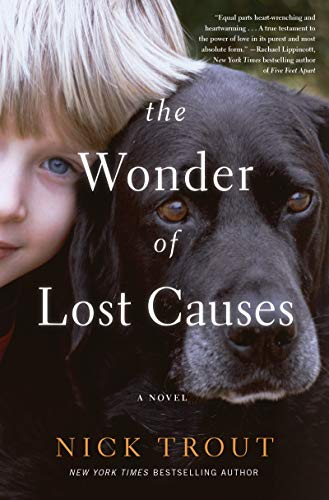 Book Cover: The Wonder of Lost Causes: A Novel