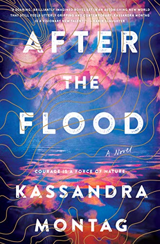 Book Cover: After the Flood: A Novel