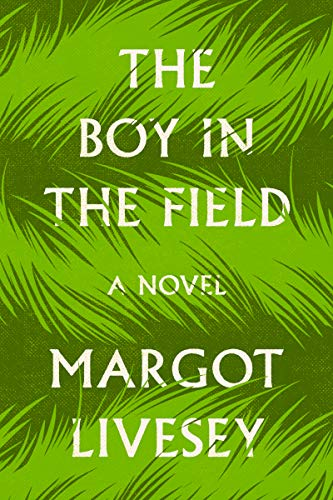 Book Cover: The Boy in the Field: A Novel