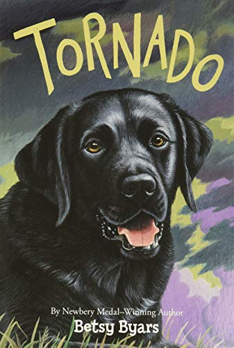9780064420631: Tornado (Trophy Chapter Books (Paperback))
