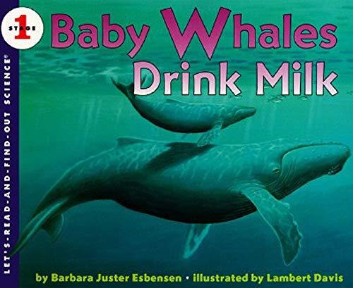 Baby Whales Drink Milk: Barbara Juster Esbensen;