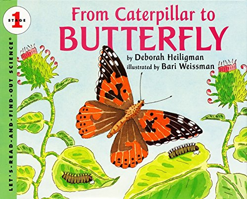 9780064451291: From Caterpillar to Butterfly  (Let's-Read-and-Find-Out Science, Stage 1)
