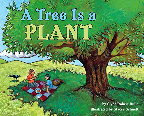 9780064451963: A Tree is a Plant (Let's read & find out science books)