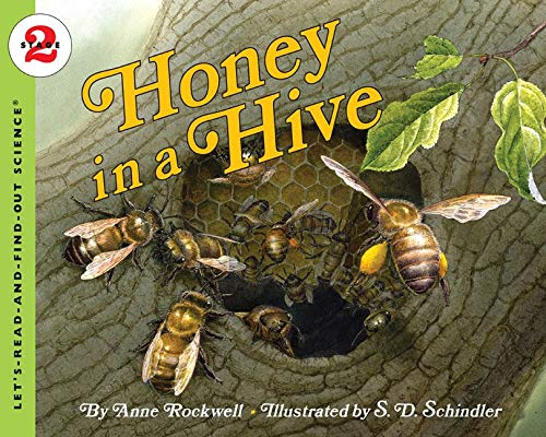 9780064452045: Honey in a Hive (Let's-Read-and-Find-Out Science 2)