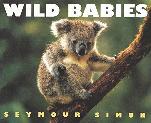 9780064462068: Wild Babies