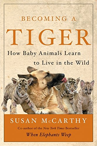 9780066209241: Becoming a Tiger: How Baby Animals Learn to Live in the Wild