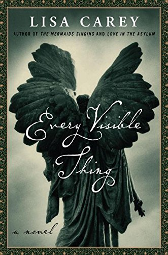 9780066212890: Every Visible Thing: A Novel
