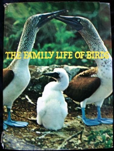 9780070176386: The Family Life of Birds