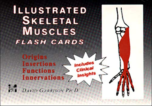 9780070229167: Illustrated Skeletal Muscle Flash Cards