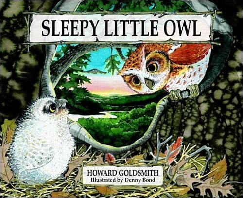 9780070245433: Sleepy Little Owl