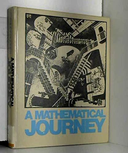 9780070251052: A mathematical journey