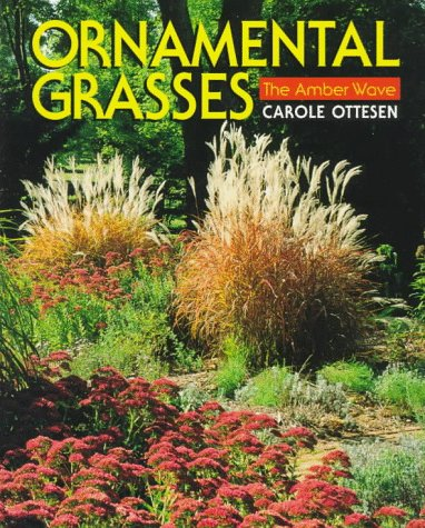 9780070480216: Ornamental Grasses: The Amber Wave