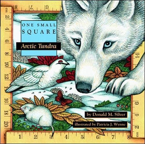 9780070579279: Arctic Tundra