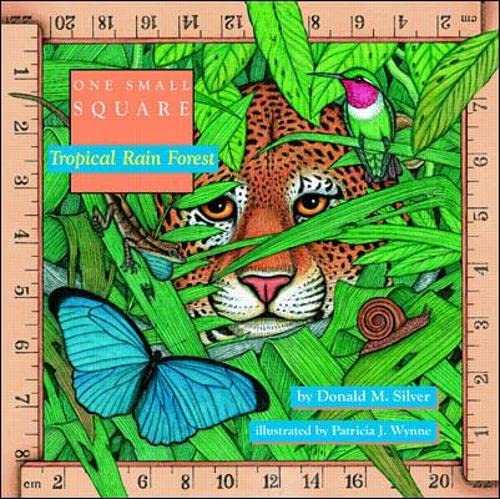 9780070580510: Tropical Rain Forest (One Small Square)