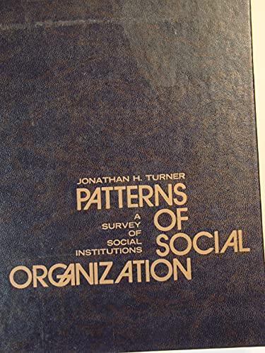 Patterns of Social Organization: A Survey of Social Institutions: Turner, Jonathan H.