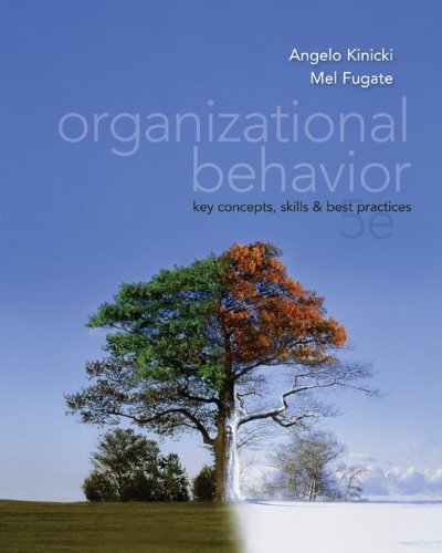 9780071317504: Organizational Behavior: Key Concepts, Skills and Best Practices