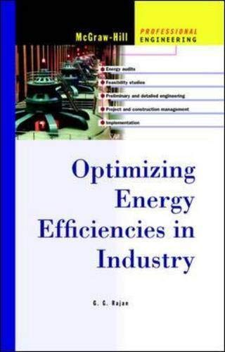9780071396929: Optimizing Energy Efficiencies in Industry