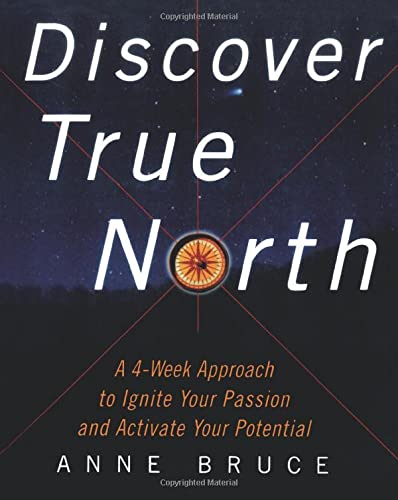 9780071403009: Discover True North : A Program to Ignite Your Passion and Activate Your Potential