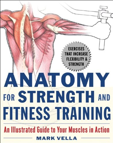 9780071475334: Anatomy for Strength and Fitness Training: An Illustrated Guide to Your Muscles in Action