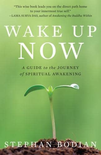 9780071494281: Wake Up Now: A Guide to the Journey of Spiritual Awakening