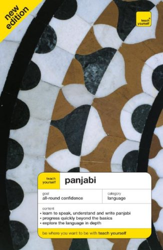 9780071547031: Teach Yourself Panjabi (Book Only) (TY: Complete Courses)