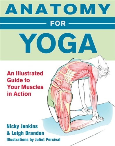 9780071633628: Anatomy for Yoga: An Illustrated Guide to Your Muscles in Action
