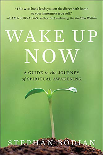 9780071742221: Wake Up Now (NTC Self-Help)
