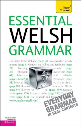 9780071759939: Teach Yourself Essential Welsh Grammar: From Beginner to Intermediate Reference