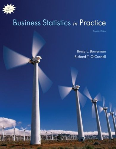 9780072977479: Business Statistics Practice