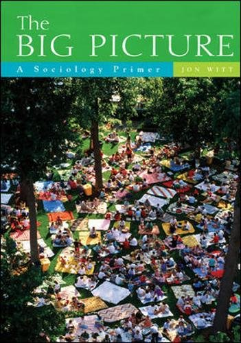 9780072990539: The Big Picture: A Sociology Primer