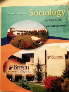 9780073521398: Sociology in Modules Second Edition