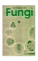 9780074603291: Textbook of Fungi