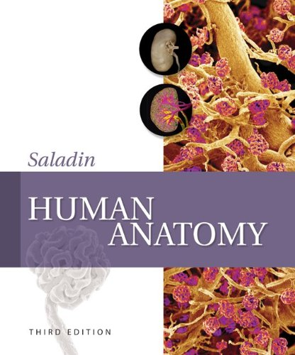 9780077403232: Human Anatomy with Connect Plus Access Card