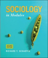 9780077831240: Sociology in Modules 2nd Second Edition