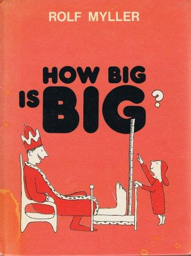 9780080228860: How Big Is Big?