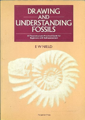 9780080339405: Drawing and Understanding Fossils