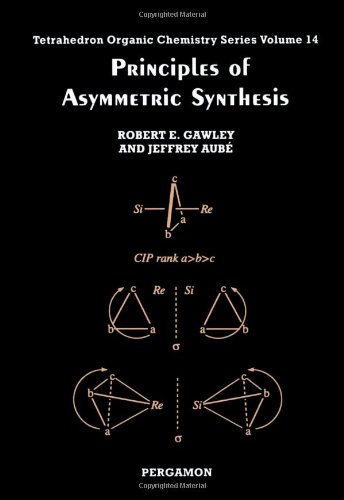 9780080418766: Principles of Asymmetric Synthesis, Volume 14 (Tetrahedron Organic Chemistry)