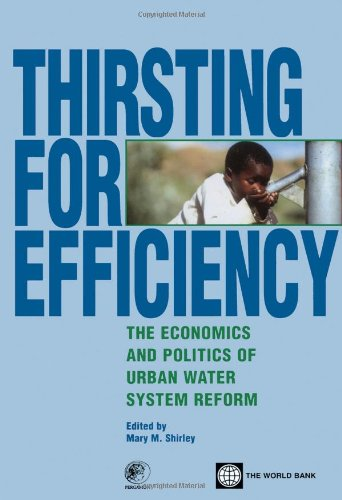 9780080440774: Thirsting for Efficiency: The Economics and Politics of Urban Water System Reform