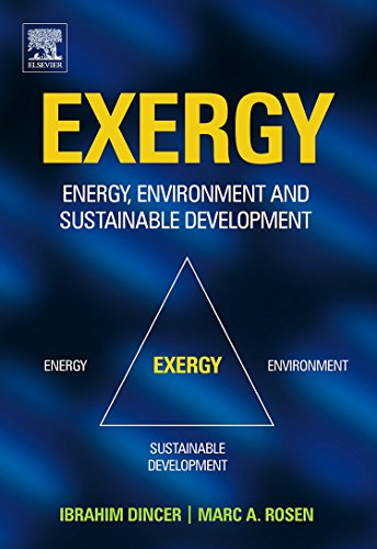 9780080445298: EXERGY: Energy, Environment and Sustainable Development