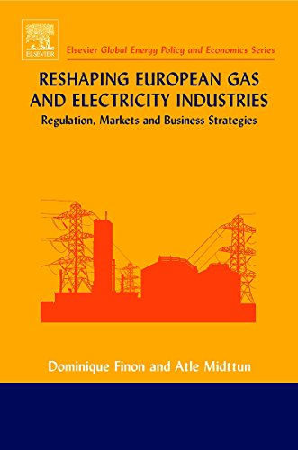 9780080445502: Reshaping European Gas and Electricity Industries: Regulation Markets and Business Strategies (Elsevier Global Energy Policy and Economics Series)