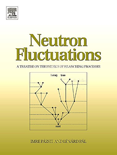 9780080450643: Neutron Fluctuations: A Treatise on the Physics of Branching Processes