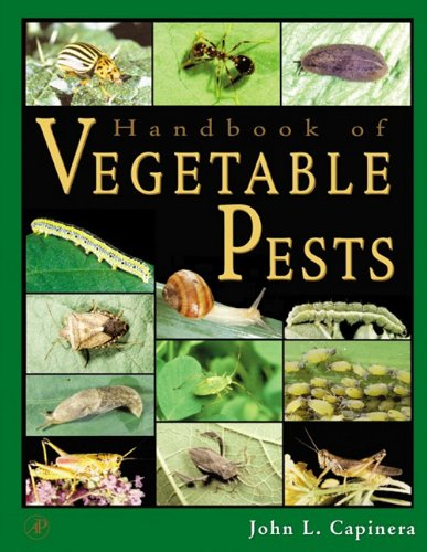9780080533261: Handbook of Vegetable Pests
