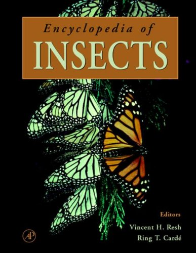 9780080546056: Encyclopedia of Insects