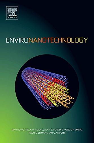 9780080548203: Environanotechnology