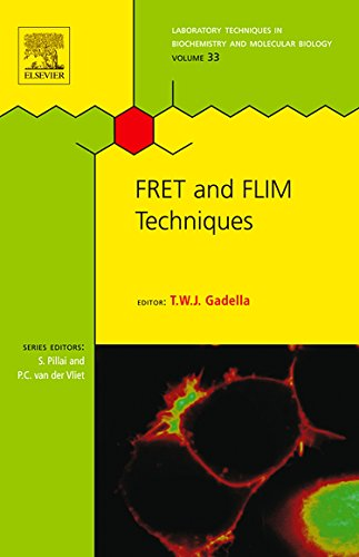 9780080549583: Fret and Flim Techniques (Laboratory Techniques in Biochemistry and Molecular Biology)