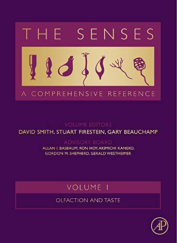 9780080925738: The Senses: A Comprehensive Reference