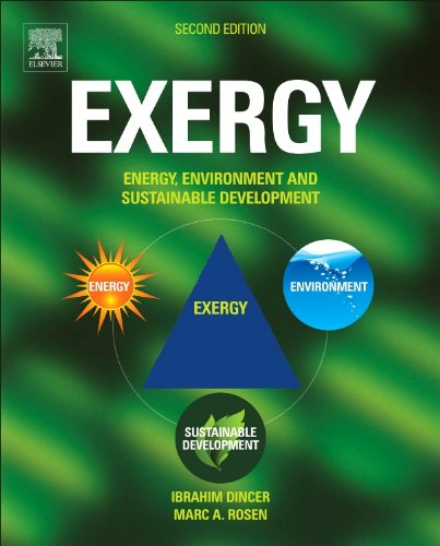 9780080970899: Exergy, Second Edition: Energy, Environment and Sustainable Development