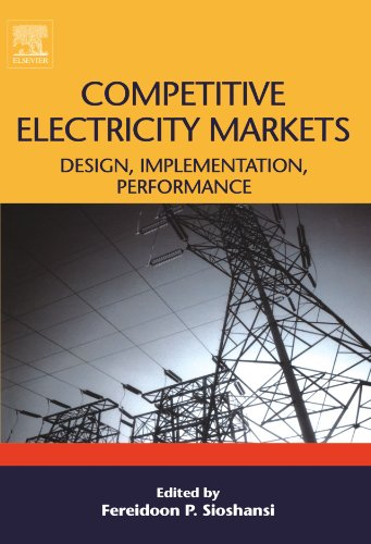 9780080974194: Competitive Electricity Markets: Design, Implementation, Performance