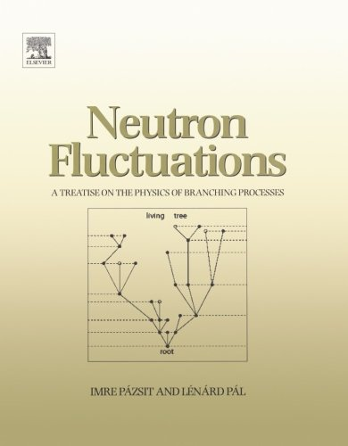 9780080975153: Neutron Fluctuations: A Treatise on the Physics of Branching Processes